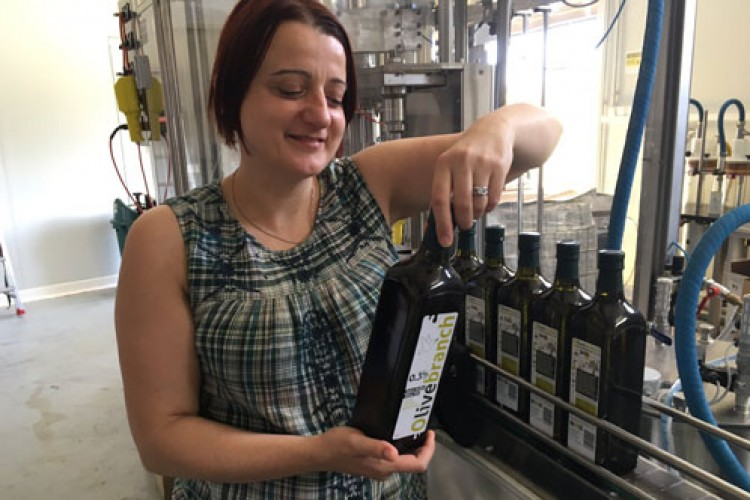 bottling-our-delicious-olive-oil